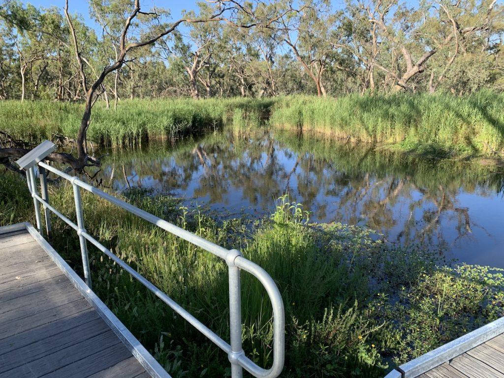 Burrima Macquarie marshes platform