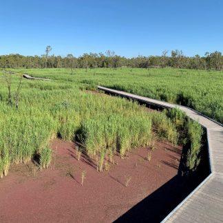 Burrima Macquarie Marshes